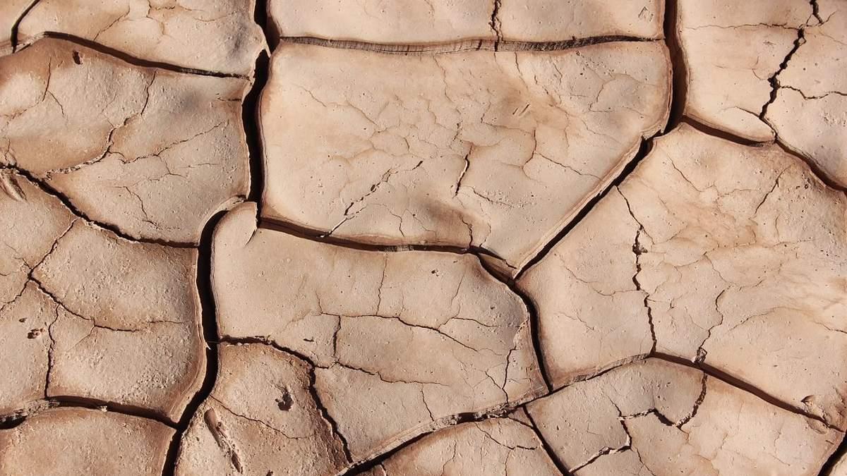 Чи буде в Україні посуха: прогноз метеоролога