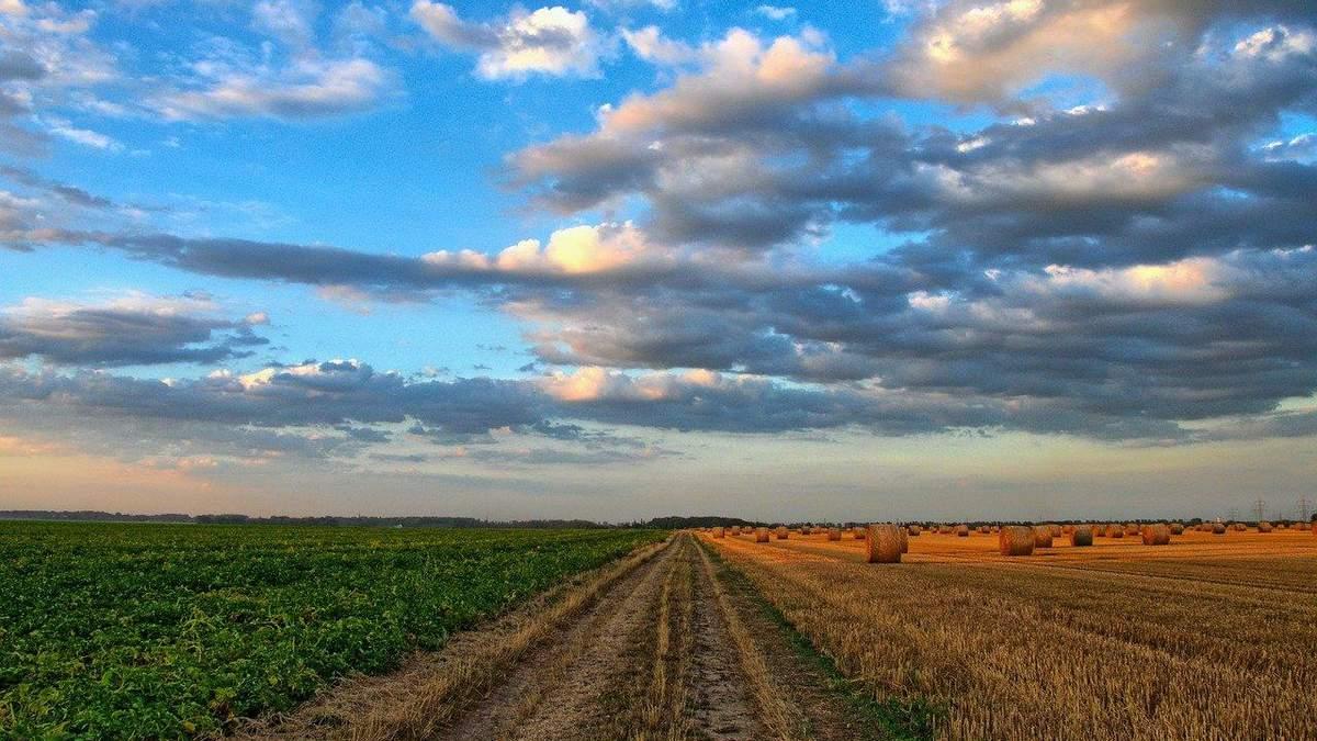 Земля в Україні стане товаром