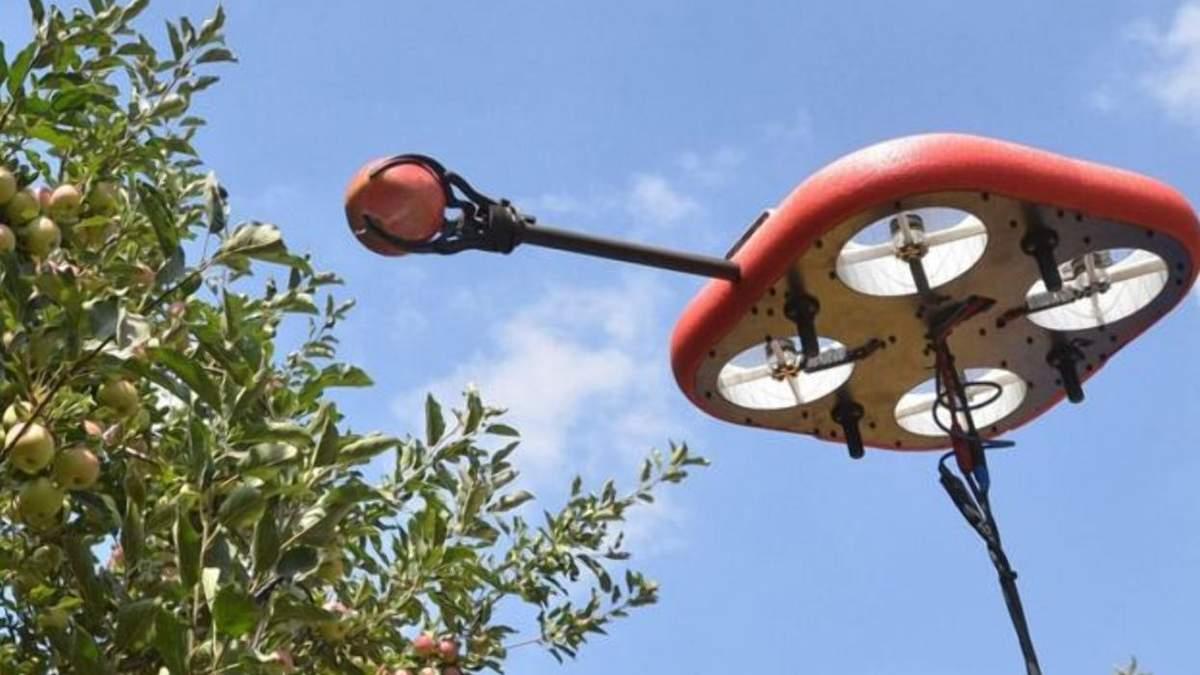 Робот для сбора фруктов: удивительная инновация израильского стартапа