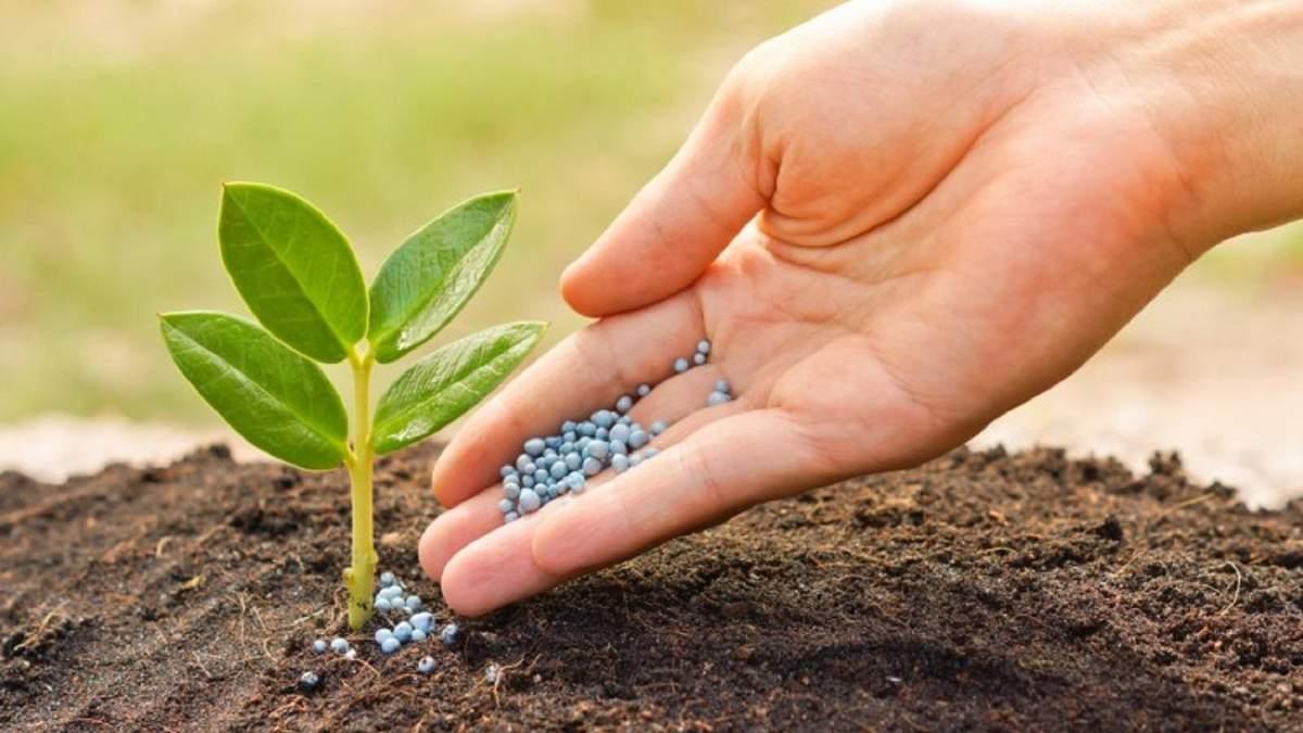 В Украине выросли цены на удобрения