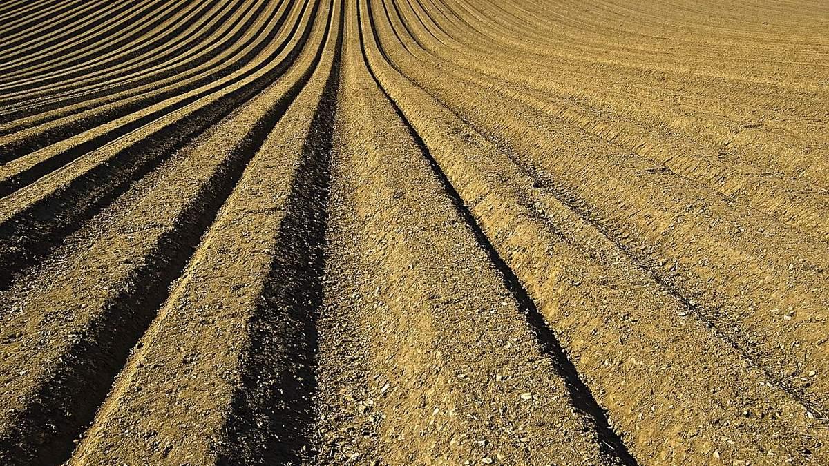 Открытие рынка земли: важнейшие вопросы об изменениях в законах