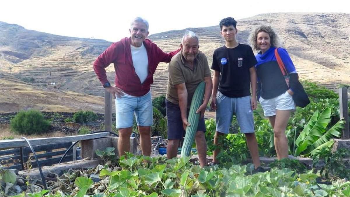 Гигант весом 8 килограммов: в Испании вырастили удивительный огурец