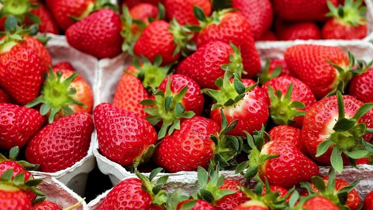 Ягідна насолода: представлено нові перспективні сорти полуниці