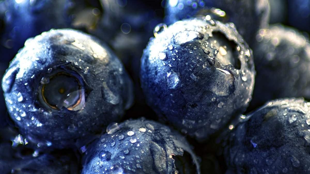 Сезон чорниці набирає обертів: скільки просять за ягоду - 21 июля 2021 - Агро
