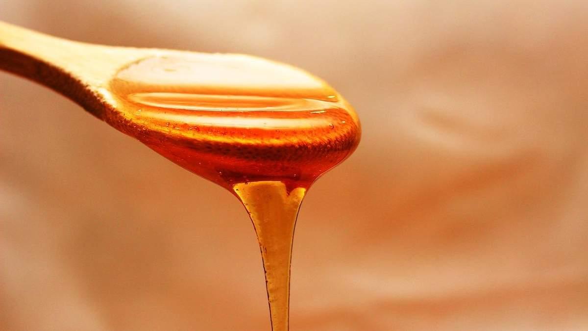 Україна наростила експорт меду