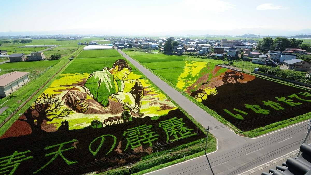 Рисовая картина в Японии