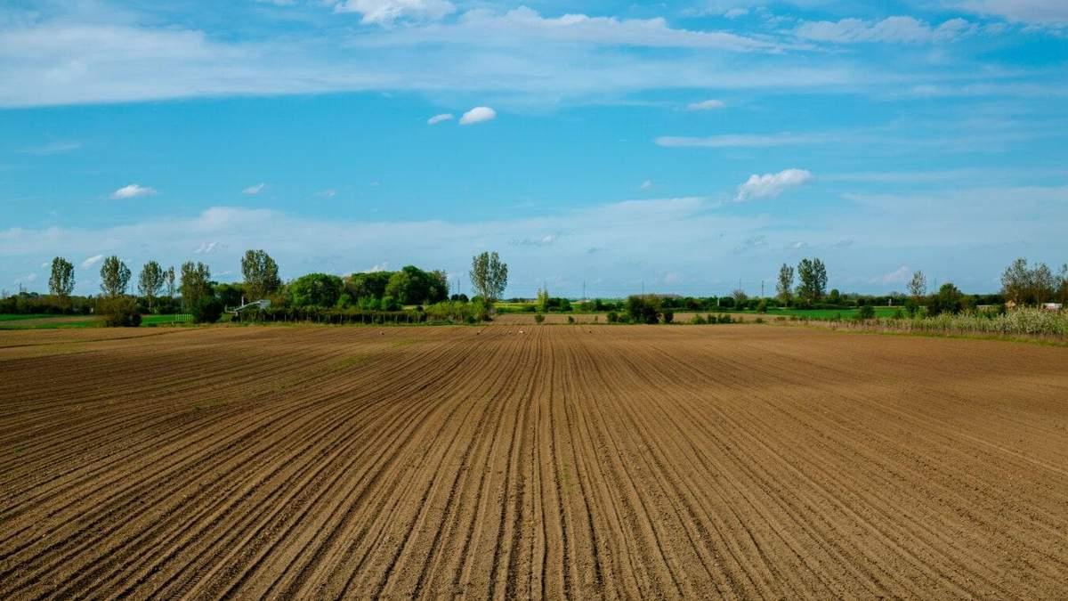 Українські аграрії стали більше витрачати на виробництво сільгоспродукції - Агро
