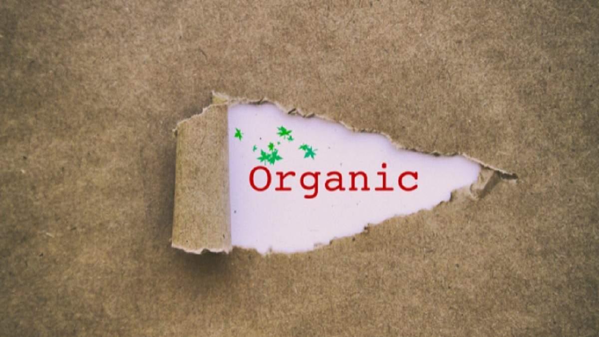 Украина экспортирует органические продукты в 40 стран: что продаем