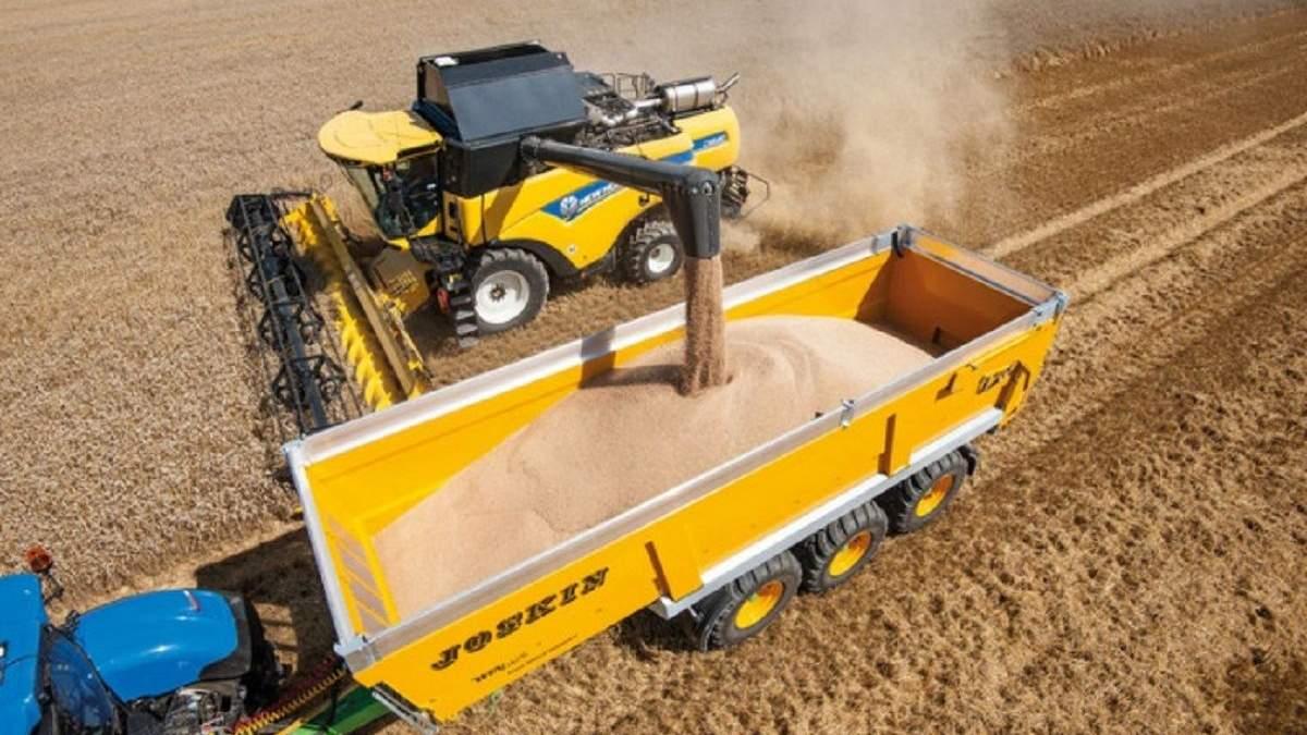 Украина может обыграть Россию на рынке зерна, – эксперт - Украина новости - Агро