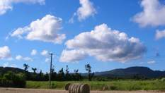 Купівля землі: які можуть бути джерела коштів у покупця