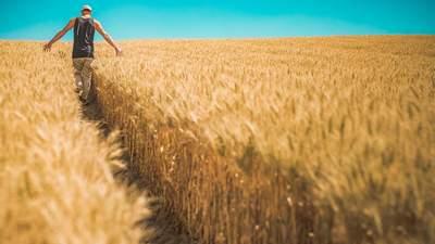 Близький Схід та Африка: Україна вийде на нові ринки експорту борошна