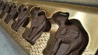 Шоколад з верблюжого молока: у Польщі створили неймовірний смаколик