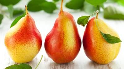 Сладкие плоды и высокий урожай: вывели новый уникальный сорт груши