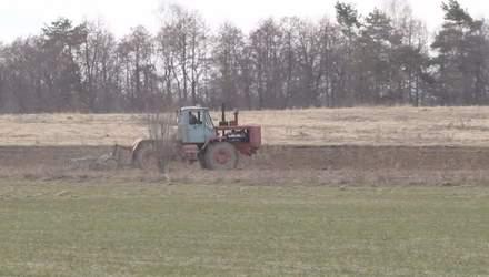 В Україні поменшає посівних площ