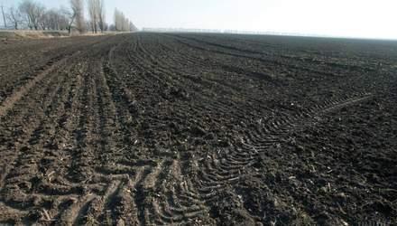 Счет – на миллионы: Госгеокадастр назвал количество зарегистрированных земельных участков