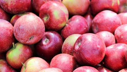 В Италии создали сорт яблока с длительным сроком хранения