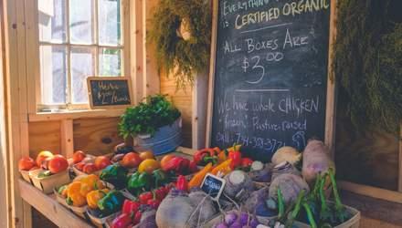 В Украине разрабатывают каталог экспортеров органической продукции: почему это важно