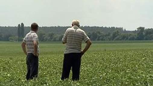 Держземагентство стане розпорядником 12 млн. га земель