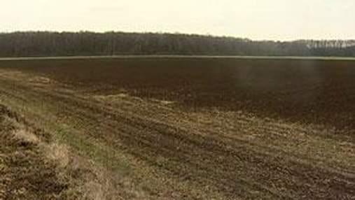 Мінагропрод: Весняна погода заощадила аграріям 5 мільярдів