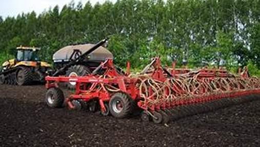 Україна засіяла 97% зернових