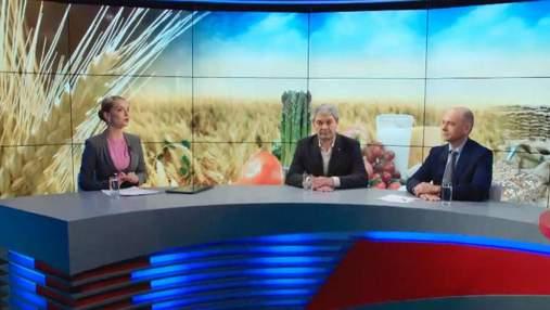 Эксперты: дефицит зерна Украине не грозит