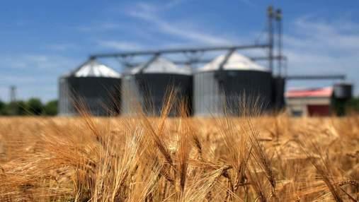 Агрохолдинг Бахматюка рекордно увеличил экспорт зерна, – РБК