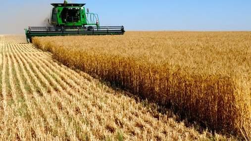 Украина не имеет достаточно транспорта для экспорта своего зерна, – Кутовый