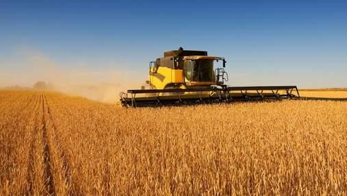 Україна зібрала рекордний врожай зернових