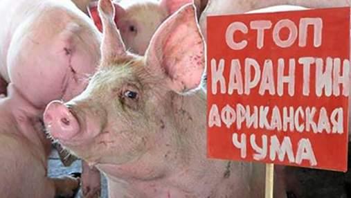 В городе в Одесской области объявлен карантин из-за вспышки опасной болезни