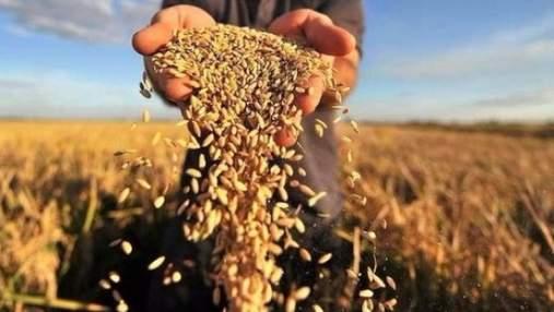 Аграрно-індустріальна держава: модель для України