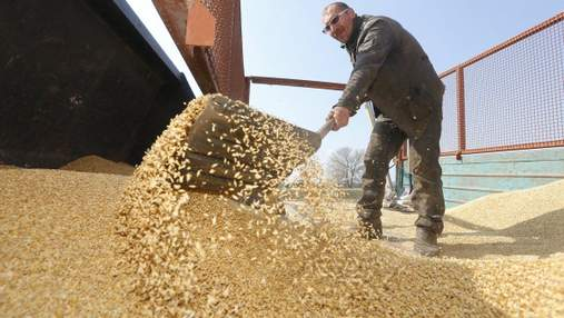 Предложенная УЗ индексация тарифов на грузоперевозки негативно повлияет на зерновой экспорт