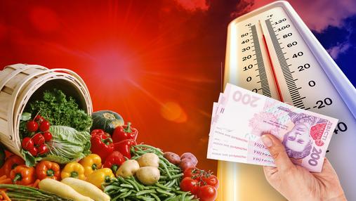 Цены на продукты: повлияет ли аномально теплая зима и чего ожидать весной