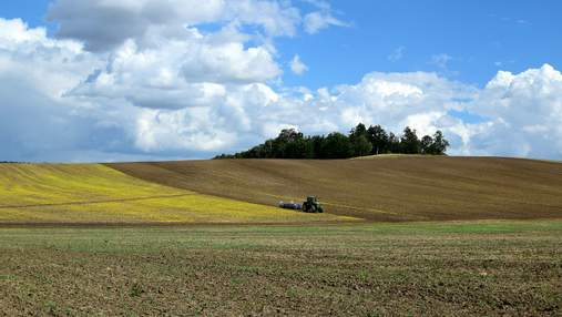 Шпаргалка для всех: как подготовиться к покупке земли в Украине