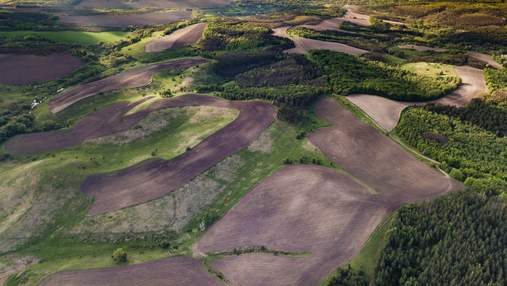 Распашка земель разрушает климат, – эксперт