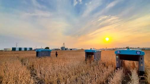 Нова аграрна революція: як прогодувати населення Землі