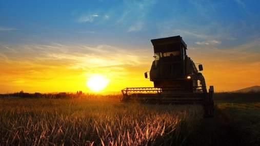 Жнива в Україні завершені: на скільки урожай-2020 менше торішнього