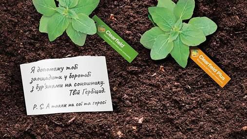 Пульс вашого врожаю: як врятувати соняшники від бур'янів