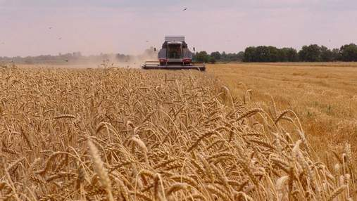 """""""Голос"""" як сигнал: вчені навчили рослини говорити фермерам про небезпеку"""