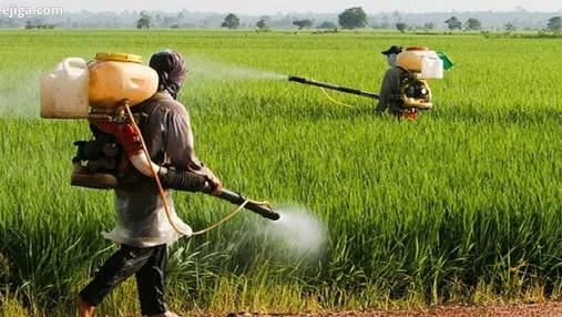 Продовольствие и агроэкология: как справиться с грядущими потрясениями