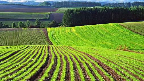 В Україні створюють унікальну базу даних про стан ґрунтів: подробиці
