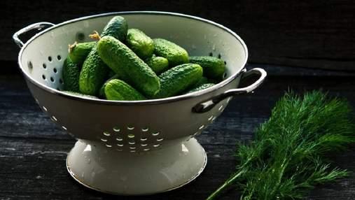 Новий український сорт огірків плодоносить 65 днів