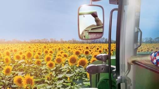 Технологія Clearfield® Plus: секрет урожаю соняшнику – контроль бур'янів і довершені гібриди