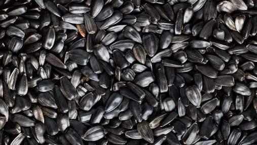 Украина существенно увеличила экспорт семян в ЕС