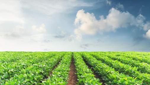 Качественная защита каждой семечки – залог высоких урожаев сои