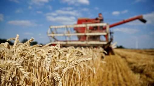 Цена высокого НДС: Украина ежегодно теряет $2 млрд из-за схем международных зернотрейдеров