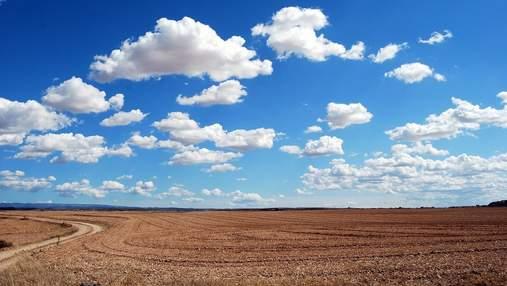 Ринок землі: як власник ділянки повинен дбати про якість грунту