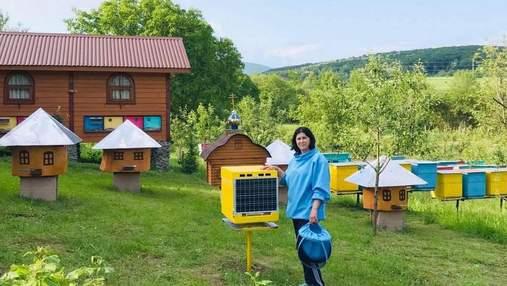 Смарт-улей: на Закарпатье пасечники испытывают инновационную разработку
