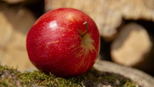 Найстійкіший до посухи сорт яблук: вердикт вчених