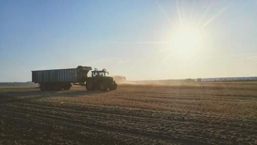 """500 мільйонів для фермерів, найстійкіші яблука, Gucci і """"Король овочів"""": огляд агроновин"""