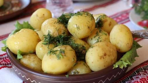 Молодой картофель вышел на украинские рынки